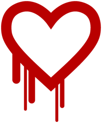 Heartbleed Vulnerability Person Image
