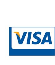 Visa Data Security Alerts Person Image